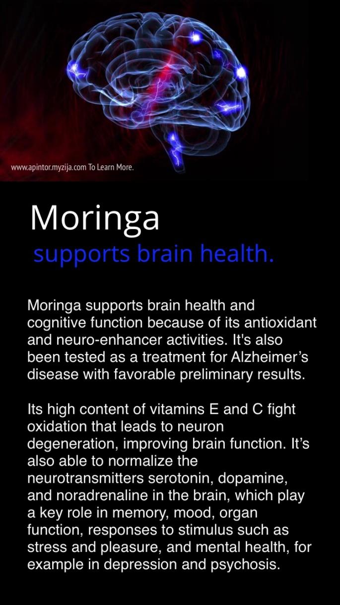 Moringa – Health Benefits Of Moringa Oleifera and Moringa Products